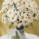 Arranjo de flores - Margarida
