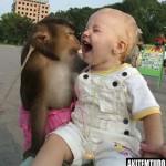 É incrivel a interação das crianças com os animais.