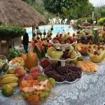 As frutas são indispensáveis na estação mais quente do ano.