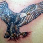 Tatuagem de águia, símbolo da grandeza, da força e da majestade.