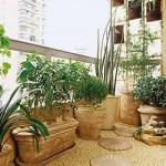 O verde das plantas contrastam com as cores claras do ambiente.