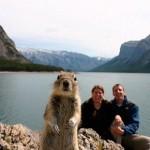 O esquilo quis aparecer na foto. (Foto: divulgação)