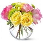 As flores sempre encantam com suas cores, formas e aromas variados. (Foto: divulgação)