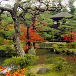 Kioto - Japão Tradicional (Foto: divulgação)