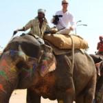 Os elefantes são são sagrados e usados como meio de transporte na Índia. (Foto: divulgação)