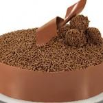Bolo de chocolate decorado com tiras largas de chocolate e chocolate granulado (Foto: divulgação)