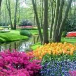 Em cada jardim na Holanda uma surpresa reservada (Foto: divulgação)