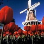 Keywords: Europa, Holanda (Foto; divulgação)