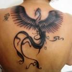 Tatuagem de fênix: fotos