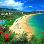 O colorido das flores contrasta com o verde do mar no Havaí (Foto: divulgação)