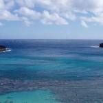 Barreira de corais no Havaí, EUA. (Foto: divulgação)