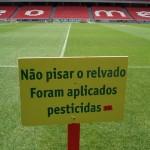 Grama com pesticidas (Foto: divulgação)