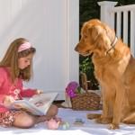 Raças de cachorros que gostam de criança