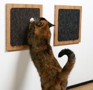 Arranhador para gatos: como escolher, dicas