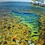 Porto de Galinhas - Águas cristalinas (Foto: divulgação)