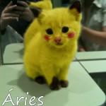 Imagem fofa do signo de Áries (Foto: divulgação)