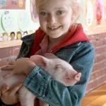 Dakota Fanning também já é sucesso desde criança (Foto: Divulgação)