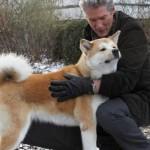 """O filme """"Sempre ao seu lado"""" mostra a história real de um cão akita que era muito apegado ao seu dono (Foto: Divulgação)"""