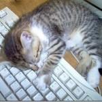 Cansado de trabalhar (Foto: Divulgação)