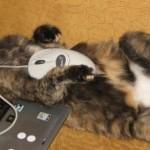 Sonhando com o mouse (Foto: Divulgação)