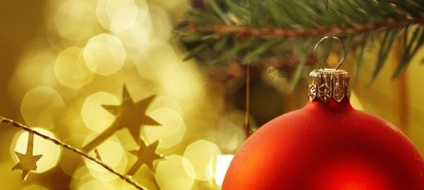 Bolinha enfeitando árvore de Natal
