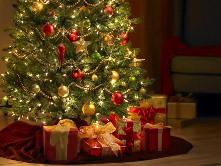 Árvore de Natal 25 de março (Foto: Divulgação)
