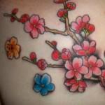 A cerejeira simboliza renovação, amor, felicidade e esperança. (Foto:Divulgação)