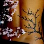 A cerejeira é uma árvore muito importante para os japoneses. (Foto:Divulgação)