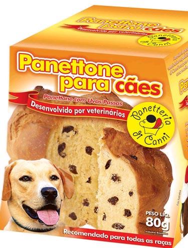 Panetone para cães: onde comprar