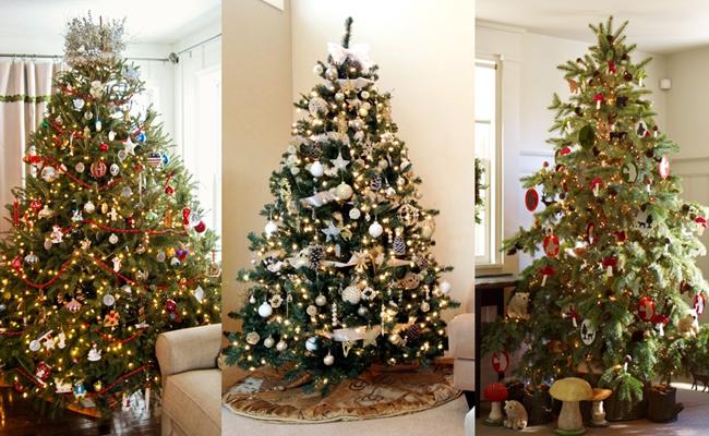 Árvores de Natal decoradas com cores diferentes