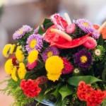 Aposte nas flores coloridas para arranjos. (Foto: divulgação)