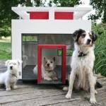 Casinha de cachorro com traços modernos. (Foto:Divulgação)