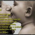 Compartilhe imagens no Facebook (Foto: Divulgação)