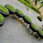 Vasos com plantas (Foto: Divulgação)
