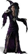 Fantasias de bruxas (19)