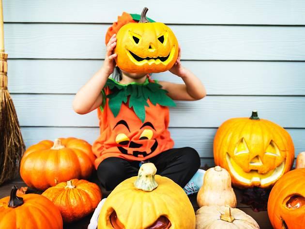 fantasia de abobora para halloween