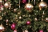 Decoração Natalina, Dicas