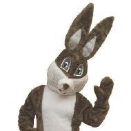Fantasia de coelho da Páscoa