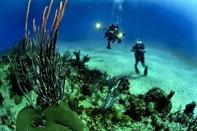 USP curso gratuito a distância de Oceanografia 2016