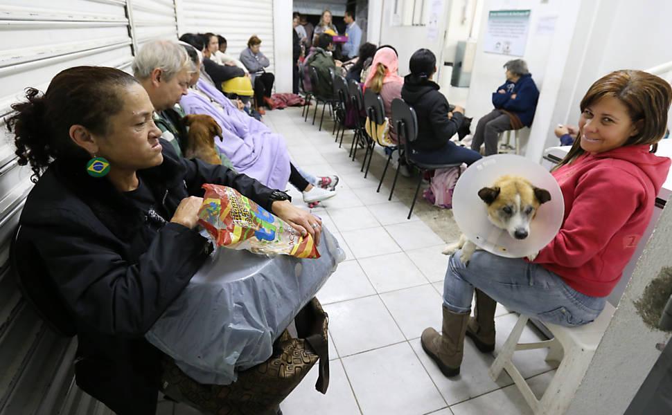 Veterinário gratuito: Clínica Veterinária de baixo custo