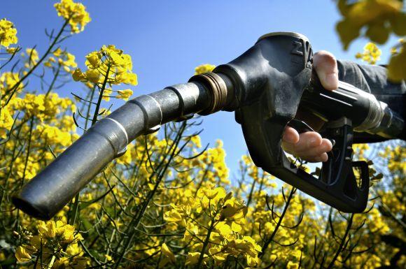 Curso gratuito de Biocombustíveis da Fatec (Foto Ilustrativa)