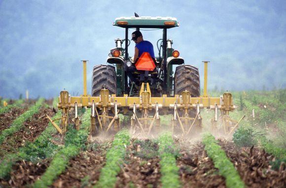 Técnico em Agropecuária (Foto Ilustrativa)