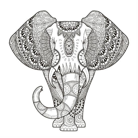Desenhos para colorir para adultos elefante