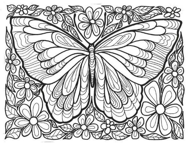 Desenhos para colorir para adultos libelula