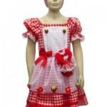 22183 Vestido de festa junina Faça seu próprio vestido caipira1 150x150 Vestido de festa junina   Faça seu próprio vestido caipira