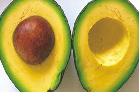 23052 benefícios do abacate Abacate e Seus Benefícios