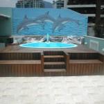 231822 golfinhos pintados na parede a cima da piscina 150x150 Decoração De Piscinas, Fotos
