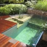 231822 piscinas naturais 150x150 Decoração De Piscinas, Fotos