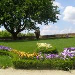 2342012484 2fdeab50e4 o 150x150 Fotos de Jardins de Casas