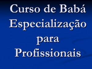 238759 Baba 3 300x225 Curso para Babá em São Paulo